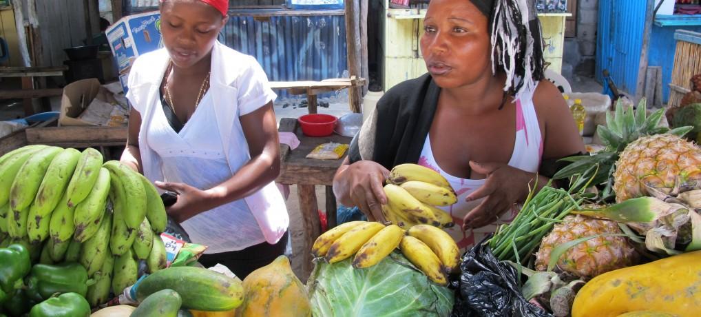 Reisebericht Südafrika Mozambique 2011