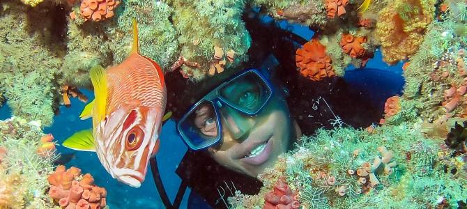 Reisebericht Sri Lanka – Malediven vom 13. bis 31. Jänner 2013