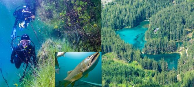 Grüner See – Meßnerin – Grüblsee