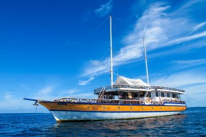 Malediven Nautilus one 2015